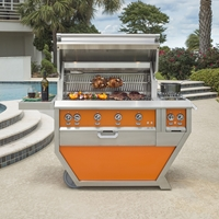 "Deluxe 42"" Grill with Work Top and Double Side Burner"